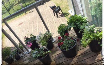 Blomster og ikke mindst nærvær