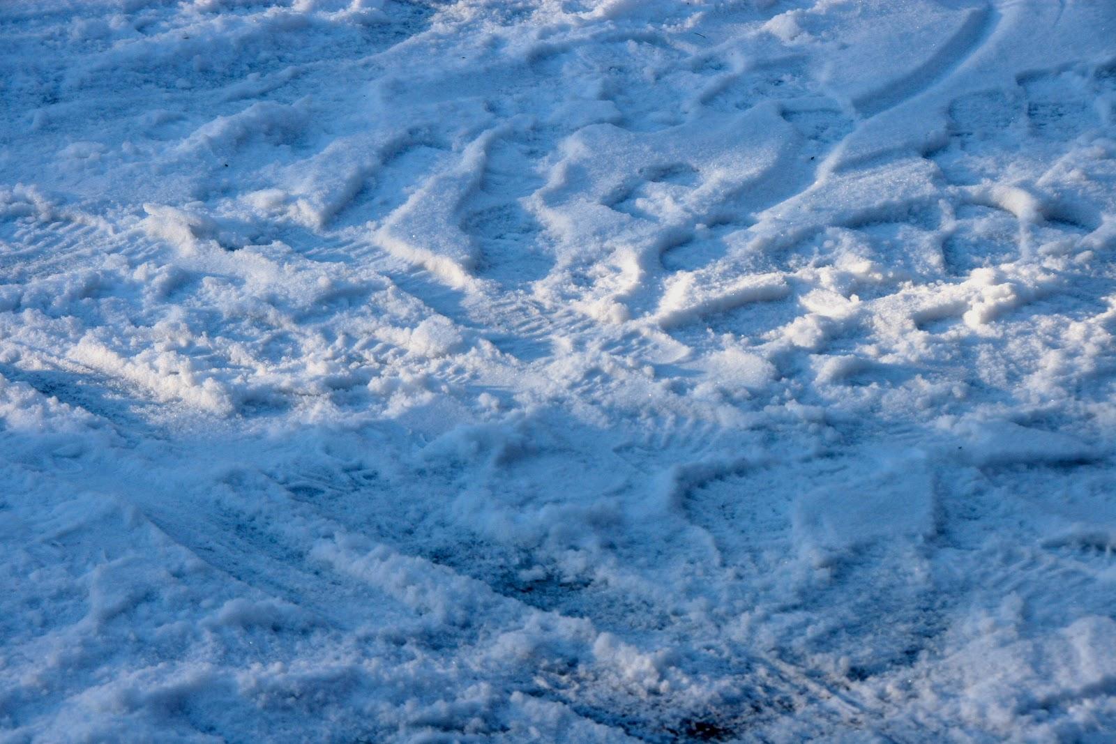 MotionsCafe fodspor i sne